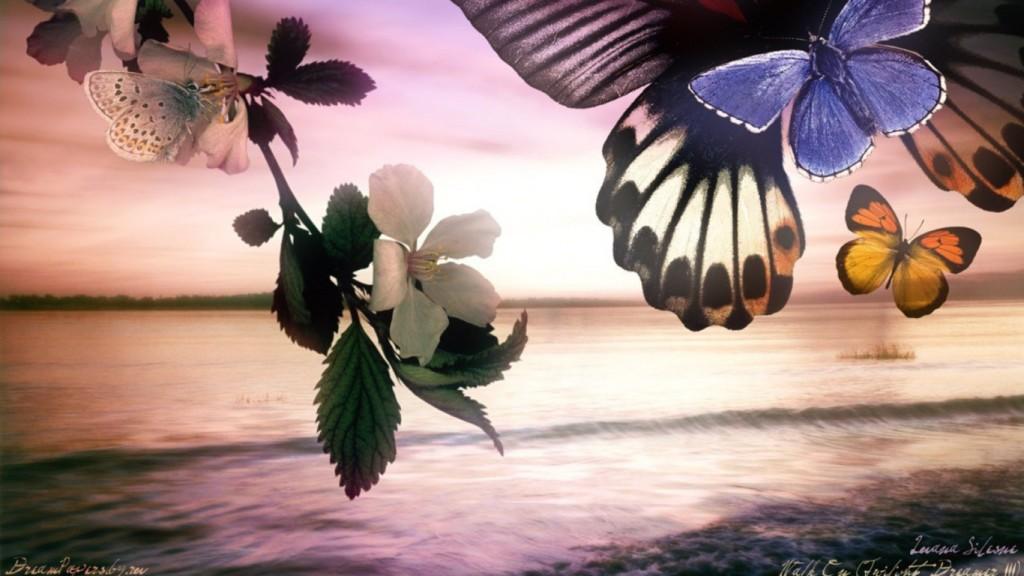 Vaimne areng -röövikust liblikaks